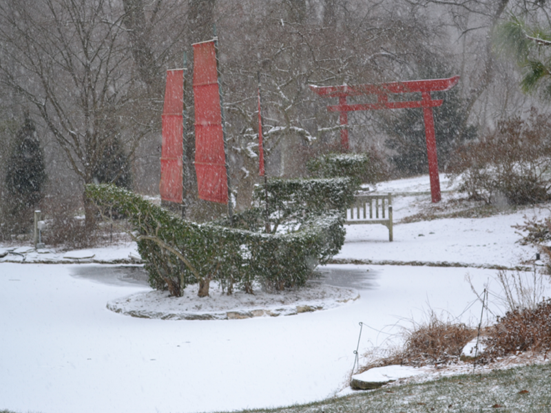Chinese junk in snow